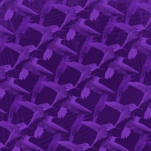 51_Birds_in_Purple